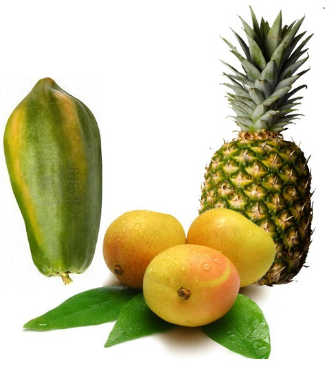 TROPICAL MIX FRUIT MANGO PINEAPPLE PAPAYA