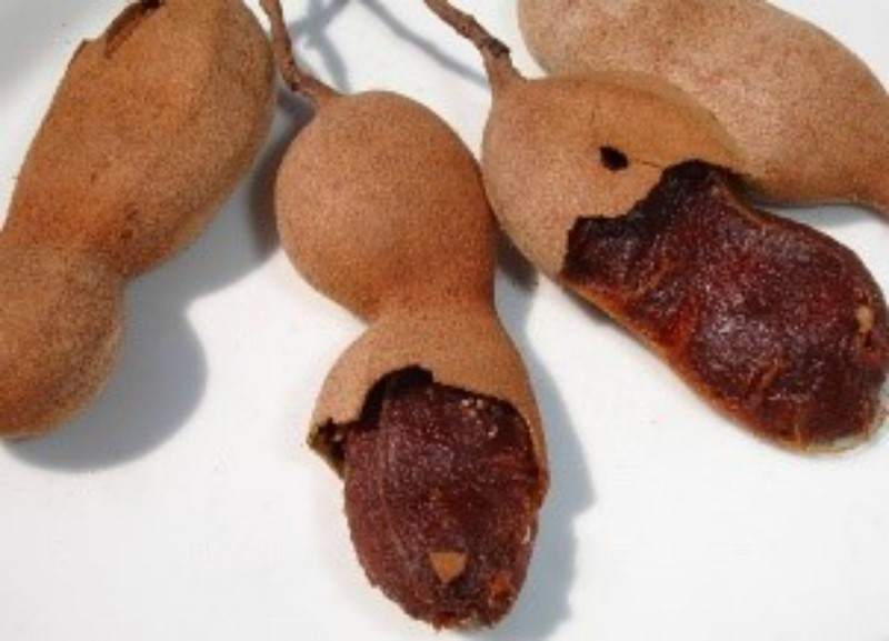 PULP TAMARIND NATURAL FROZEN